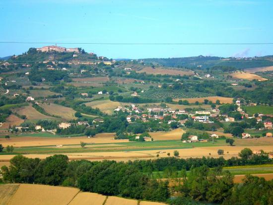 Agriturismo La Torraccia: Monte Castelo de Vibio desde el jardin