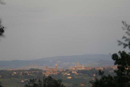 B&B La Canonica di San Michele: La vue sur Sienne (entre deux arbres) depuis la Canonica