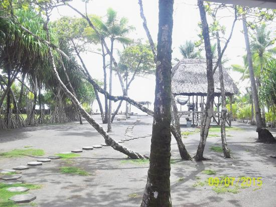 Cabinas Coloso Del Mar : The beautiful and relaxing beach garden