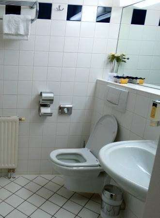 Hotel Domizi: Здесь хороший набор туалетных принадлежностей
