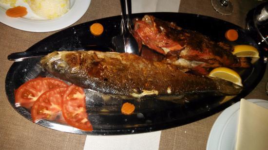 Hotel Posejdon: de bon poissons frais
