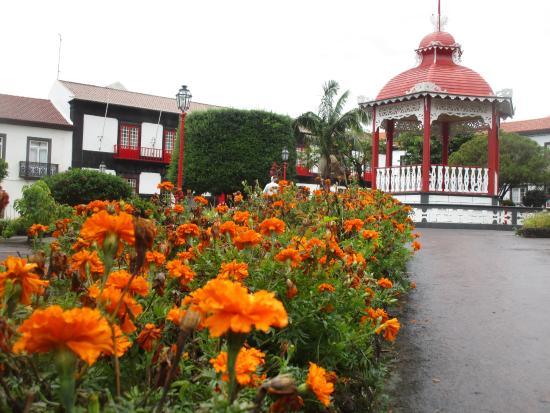 imagem Flor do Jardim em Velas