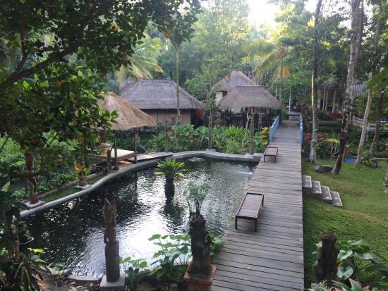 Ubud Sari Health Resort: photo9.jpg
