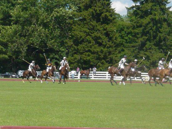 Greenwich Polo Club