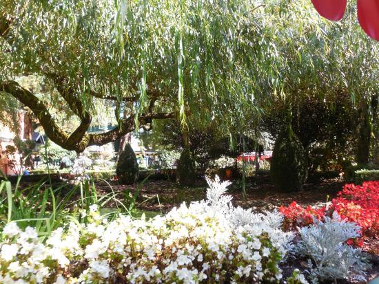 jardin fleuri - Bild von Europa-Park, Rust - TripAdvisor