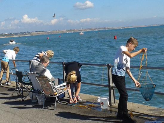 Mudeford Quay Crabbing