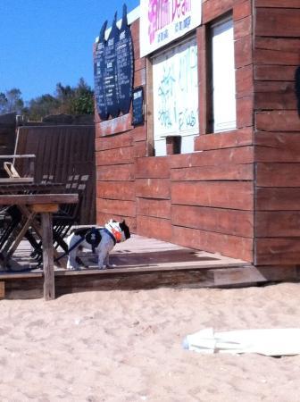 Restaurant Le Milouin La Tranche Sur Mer
