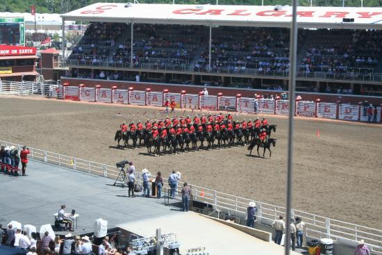 Rodeo Royal Mountie Display Picture Of Calgary Stampede