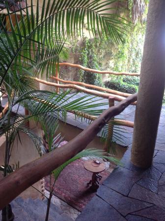 Laguna Lodge Eco-Resort & Nature Reserve: Laguna