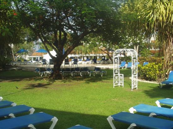 The Club, Barbados Resort and Spa: Garden area