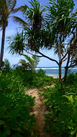 Hale Makai Cottages: Direct beach access from Cottage #3