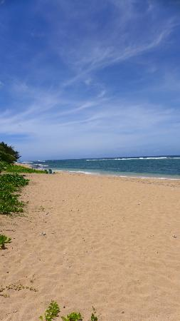 Hale Makai Cottages: This beach is all yours!