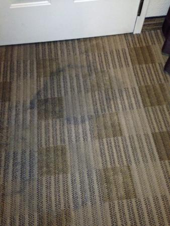 Extended Stay America - Santa Rosa - South : horrible. not clean.  smelled of cig. smoke room floor filthy. broken items (see pics).   for me
