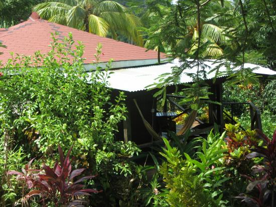 Marigot, Dominica: Nature bungalow