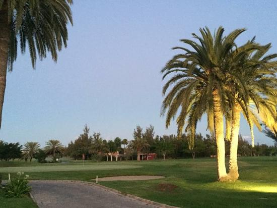 Campo del Golf de Maspalomas : Precioso Campo de Golf Maspalomas