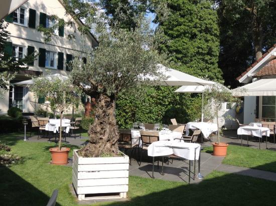 Hotel Mühle: Garten / Garden