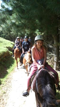 Ohariu Valley Equestrian Centre : A young group of customers on a trek