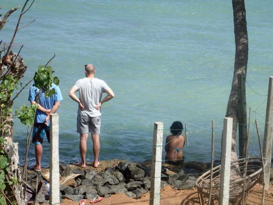 Tropi Turtle Guesthouse: photo1.jpg