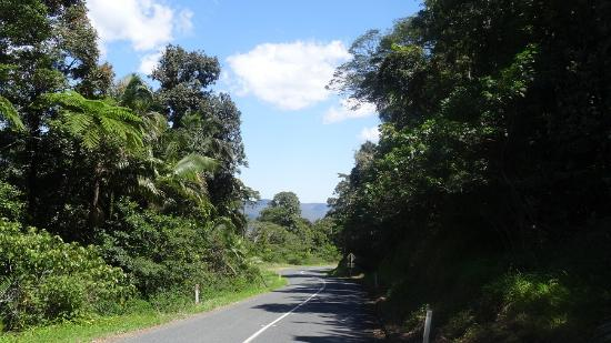 Eungella Mountain Edge Escape: For a beautiful scenic drive travel along Dalrymple Road and observe rolling hills, farm land an