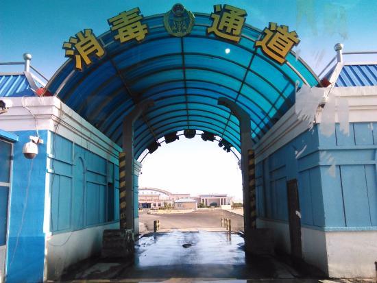 Erlian Nation Gate: ゲート