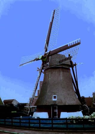 Zuid-Holland, Nederland: mulino a vento