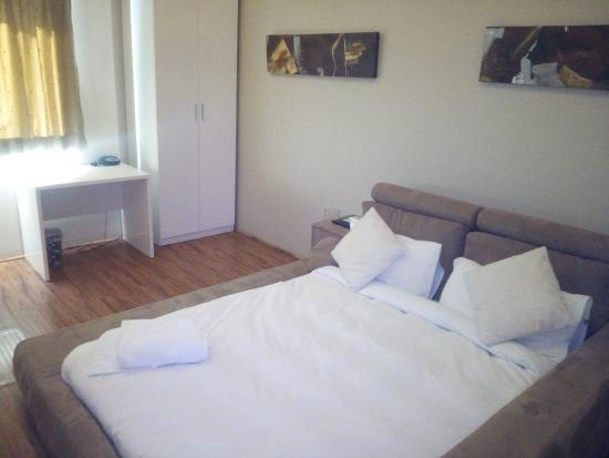 Posh Hotel: Room