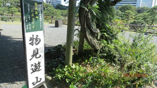 物見遊山ガイドツアー(庭園ガイドツアー...
