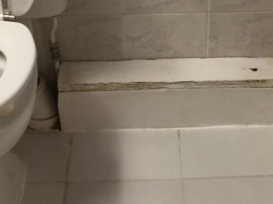 Houtwerk in de badkamer, likje verf? - Picture of Pembroke Townhouse ...