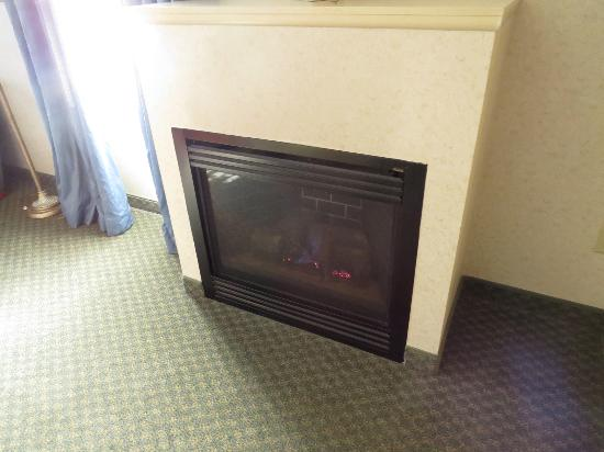 Holiday Inn Express Hotel & Suites Boston-Marlboro: Gas Fireplace