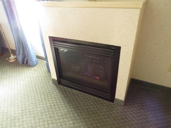 Holiday Inn Express Hotel & Suites Boston-Marlboro : Gas Fireplace