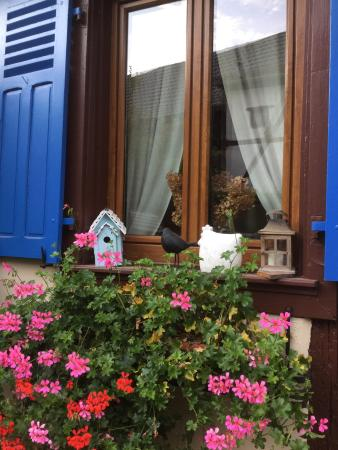 Huttenheim, فرنسا: photo3.jpg