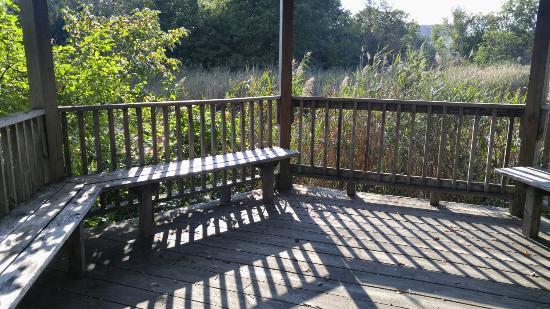 Poquonnock River Walkway