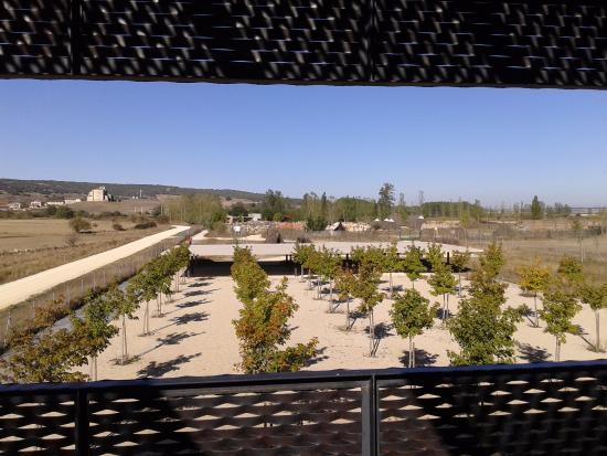 Centro de Arqueologia Experimental (Carex)