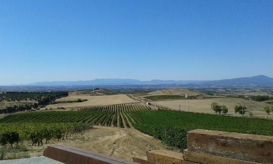 Sanluri, Italie : Cantina con vista!