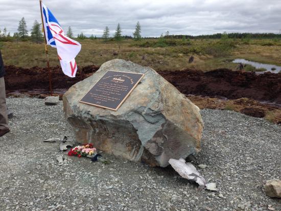 Gander, كندا: Site