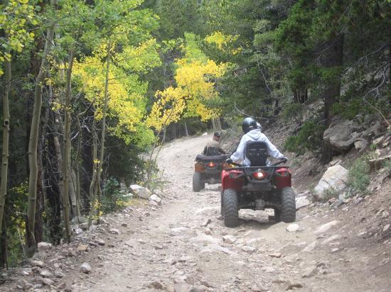 Headed up Cascade Creek Road - Picture of ATV Experience