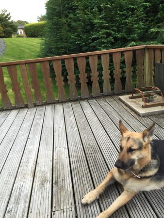 Cadair View Lodge Photo