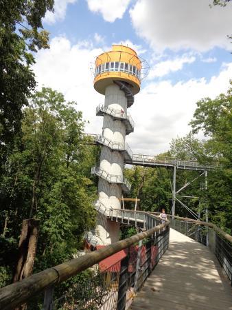 Bad Langensalza, Alemania: Aussichtsturm am Baumkronenpfad