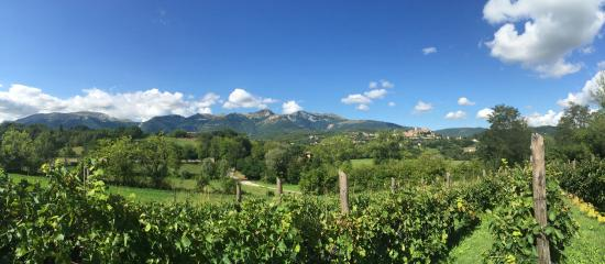 Villa San Raffaello: Incredible view from the garden