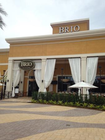 Brio Tuscan Grille New At Dolphin Mall Nice