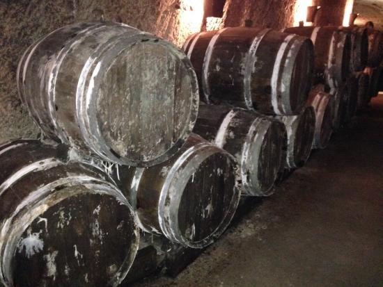 Loire Valley Wine Tour - Day Tours: Loads of Wine