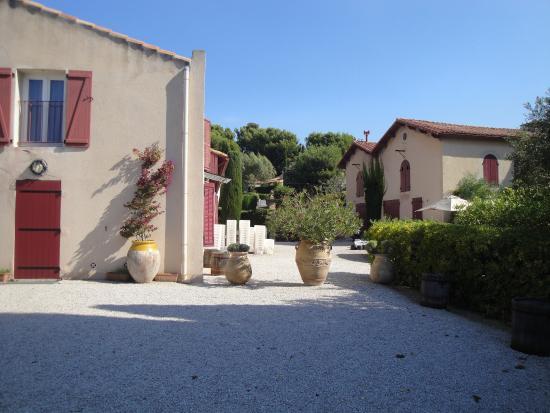 Clos Sainte Magdeleine: Winery