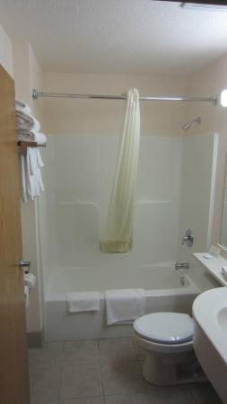 Microtel Inn & Suites by Wyndham Tomah : The sink is in the bathroom and there's plenty of bathroom countrerspace.