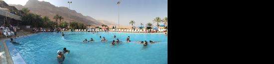 Ein Gedi Spa: pool