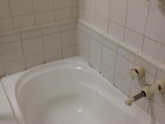Quality Hotel Wangaratta Gateway: Black mould - should not be there in a 4 star establishment!