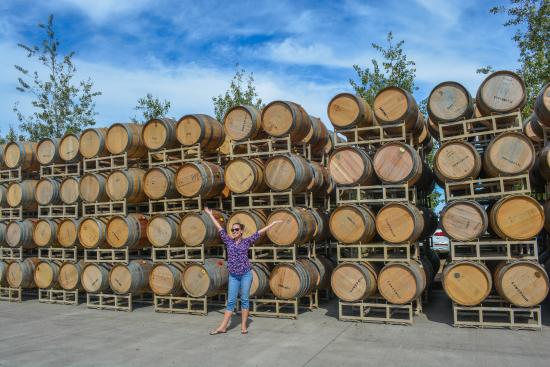 Rickreall, OR: Wine barrels at Eola Hills