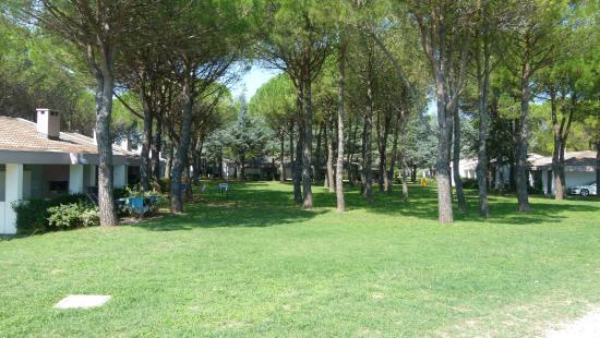 Marina Julia, Italia: Villinos