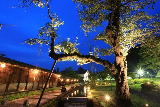 Kaneyama-machi, Japan: 大堰公園ライトアップ1