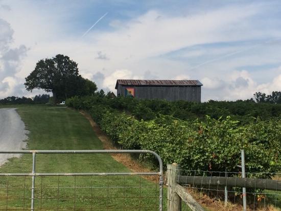 Madisonville, TN: photo9.jpg