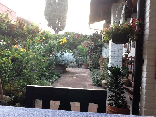Casa Marie: View from Breakfast table to Garden